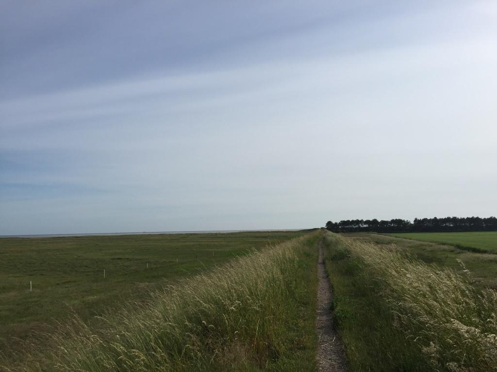 billed af diget ved Sønderstrand på Rømø